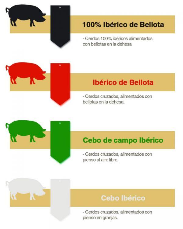Jamón de cebo de campo ibérico - 50% Raza ibérica